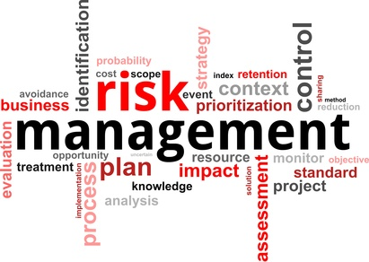 word cloud - risk management
